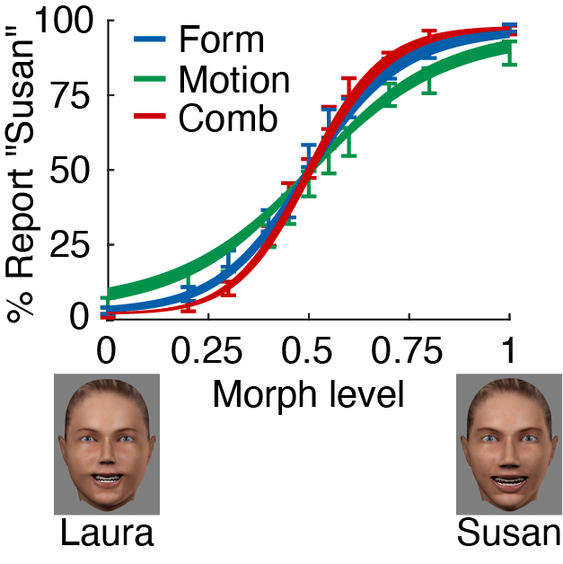 Cue integration of facial form and motion during face recognition can be predicted by an optimal model.